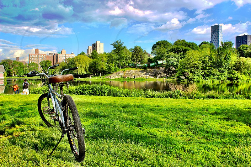 bicycle at the park photo