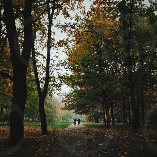 man in black jacket holding hands with woman while walking on park during daytime photo