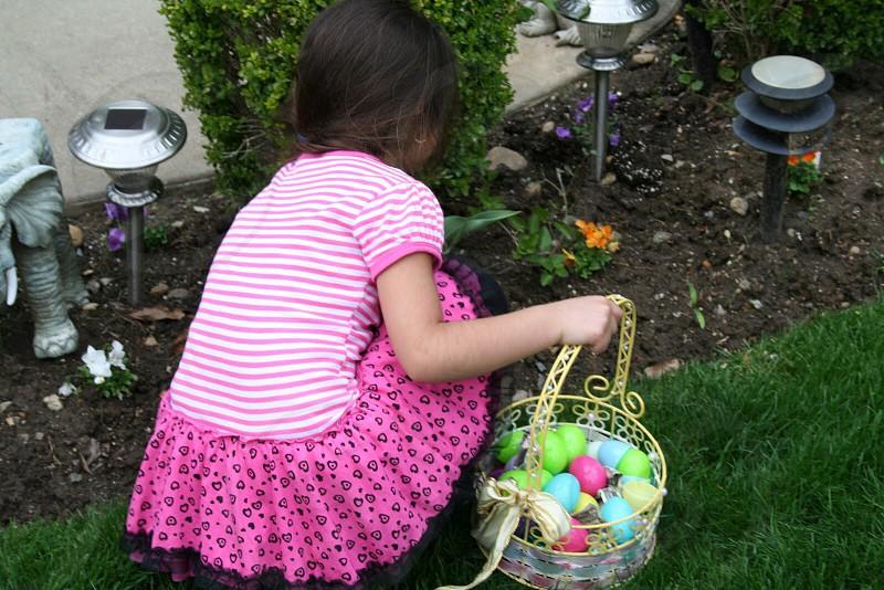 Spring colors Easter egg hunt  photo