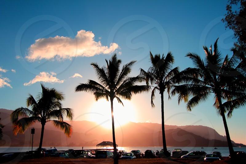 Hanalei Kaui at sunset photo