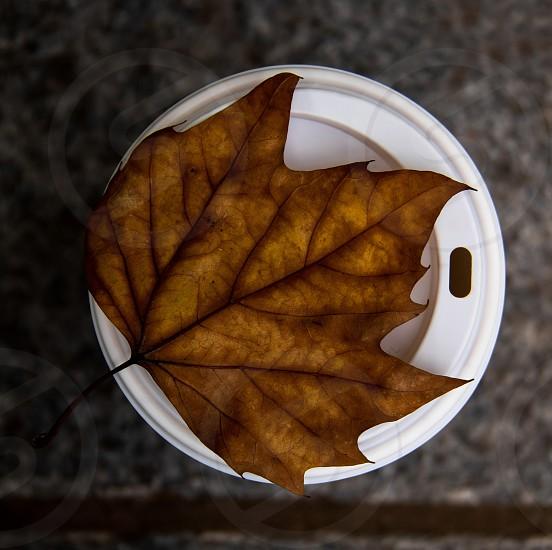 Love coffe in cold autumn xD by Alex Plop photo