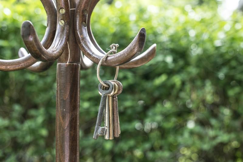 Bundle of old keys on a vintage wooden hanger in the garden photo