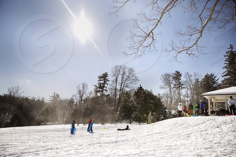 Sledding during a snow day in North Carolina photo