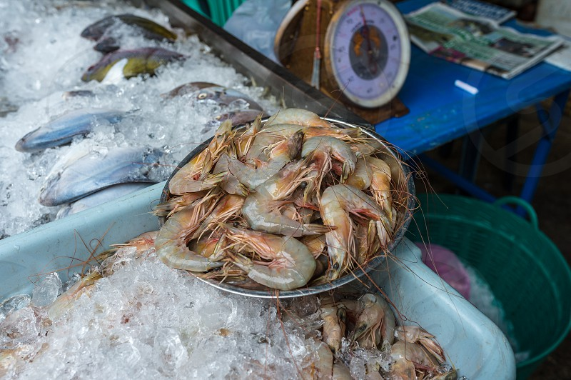 Seafood market - fresh seafood for sale in Bangkok Thailand photo