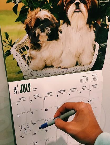 24th birthday calendar planning photo
