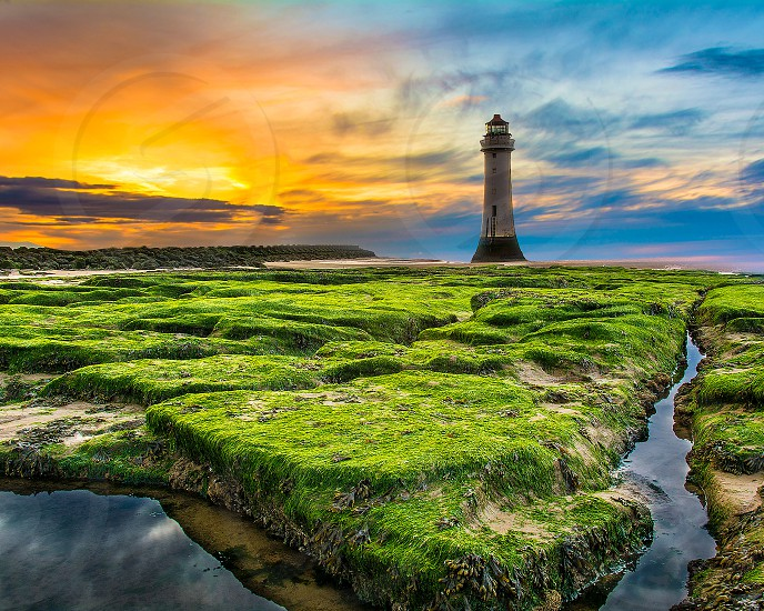 Lighthouse in New Brighton on dry and green rocks. photo