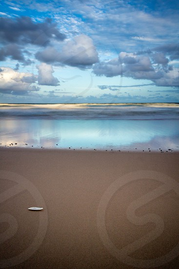 Reflections cuttlefish sand beach evening clouds ocean sea deserted tropical photo