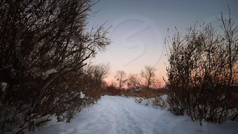 Shot on Whitefish Island in Sault Ste. Marie Ontario.  photo