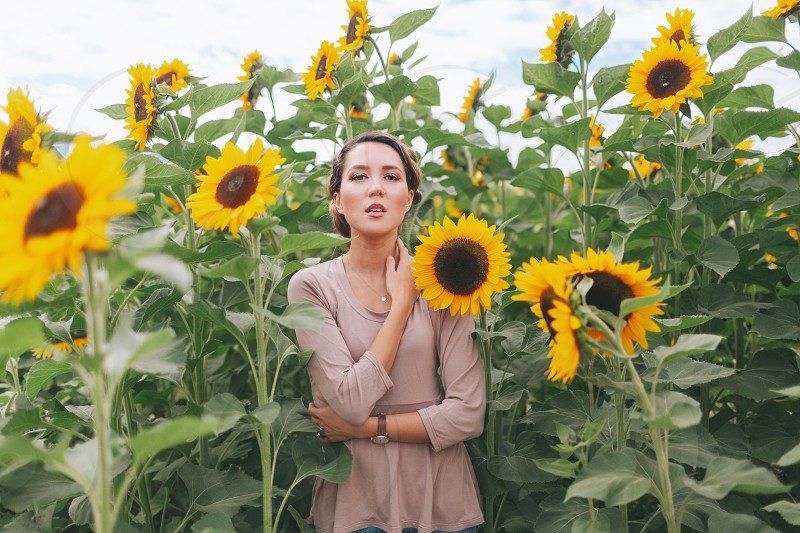 A beautiful young woman in a sunflower field.  photo