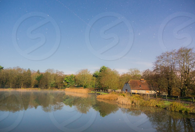 a full moon lit scene of a pond with stars present overhead photo