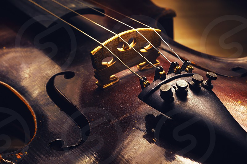 Closeup view on old dusty violin details of wood and structure.  photo