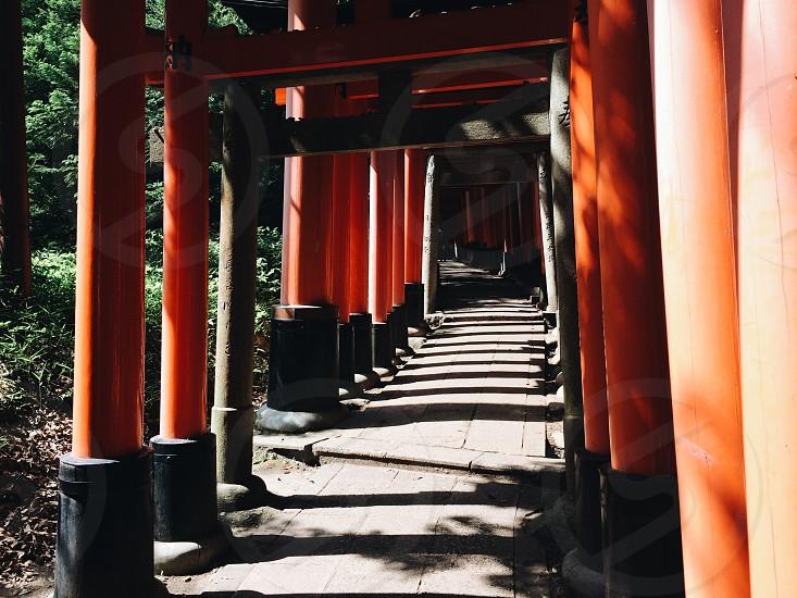 Kyoto.  photo