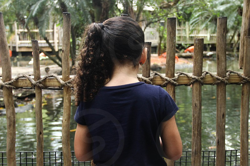 Girl and fence photo