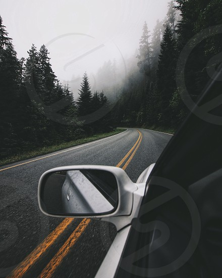 white and black car on road near green pine trees during daytime photo
