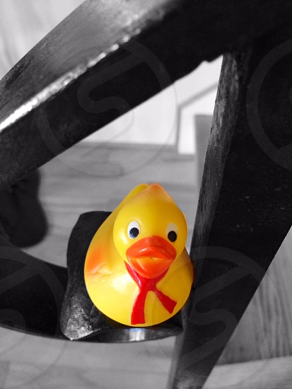 Black & White Background AND Rubber Duckie in Color  photo