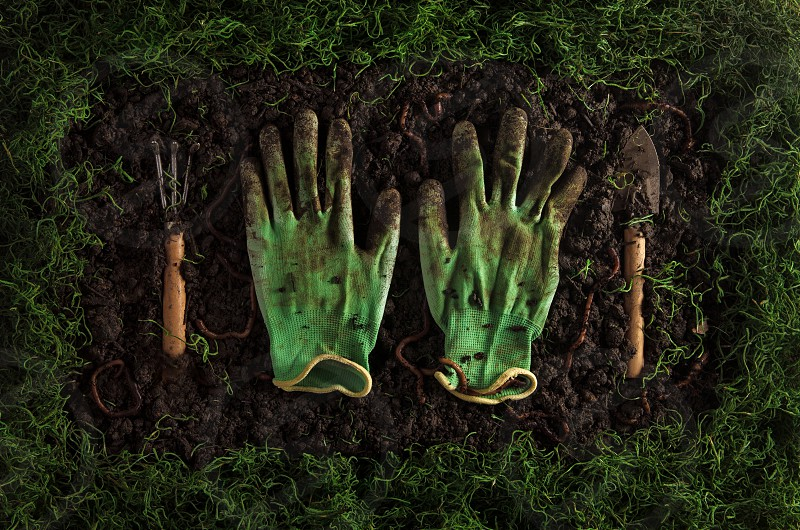 Still life with earth worms soil gloves and gardening tools photo