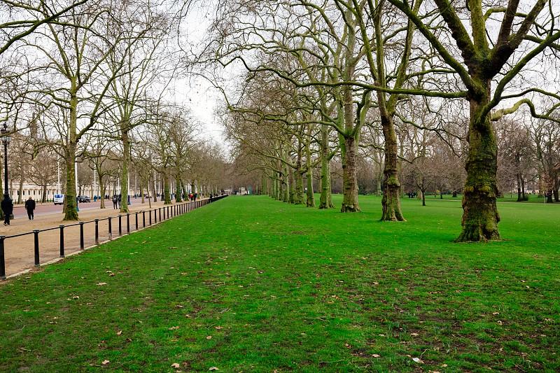 St James's Park London photo