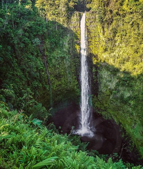 Akaka falls big island Hawaii  photo