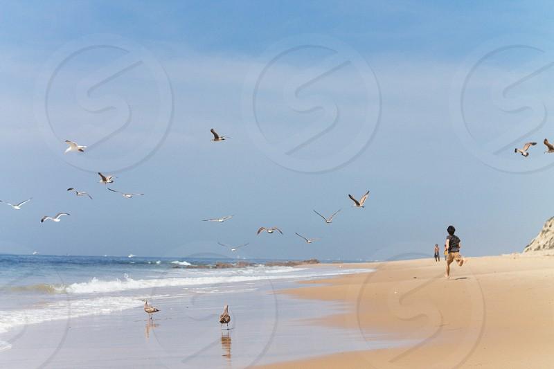 boy playing beside seashore photo
