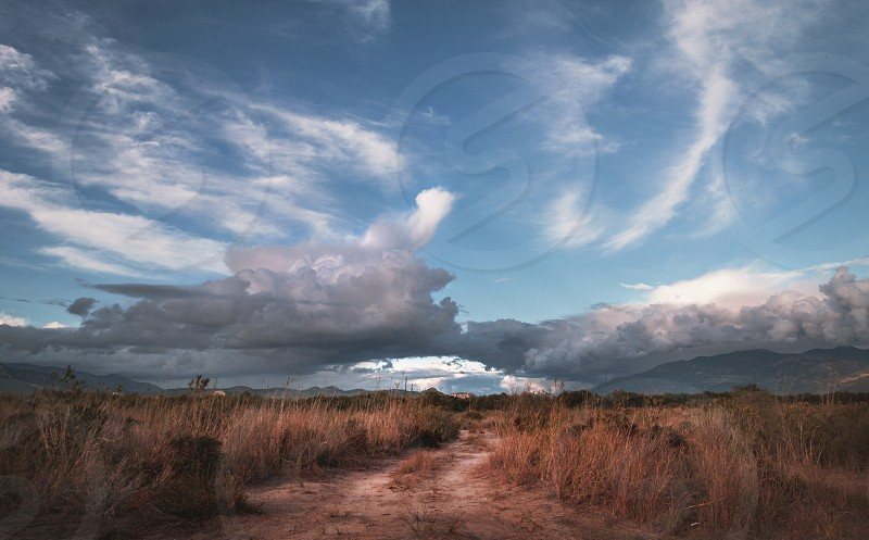 Rural pathway in the grass in Kalkan Patara. Cloudy sky landscape  photo