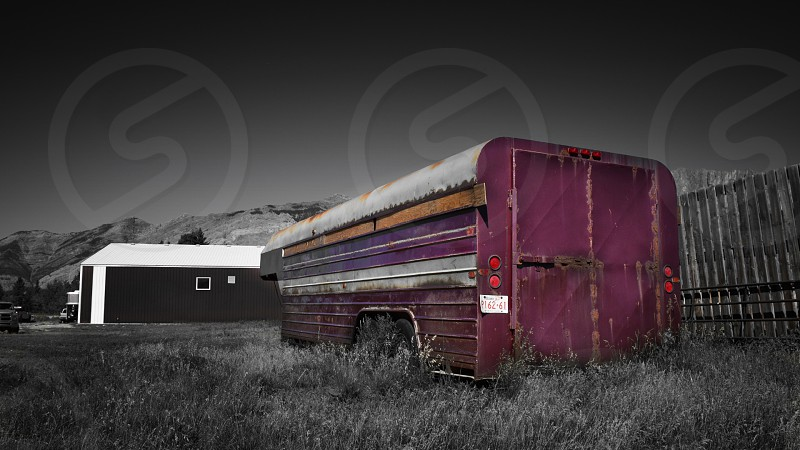 An old purple horse trailer found on an Alberta ranch  photo
