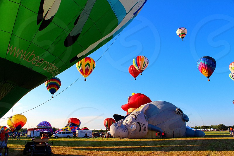 green blue and white hot air balloons display photo