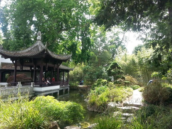 Chinese garden in Frankfurt photo