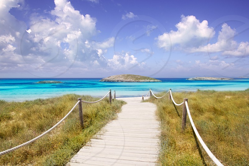 beach way to Illetas paradise beach in Formentera Balearic islands photo