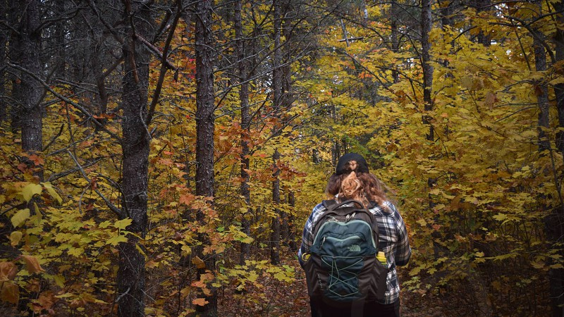 A hiker walks through beautiful fall foliage in a forest  photo