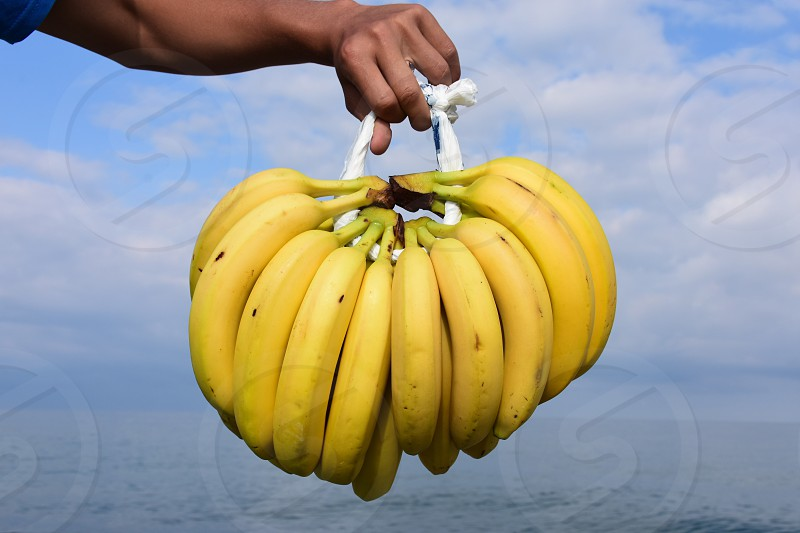person holding a clusters of yellow bananas over blue sea water under blue sky and white large clouds during daytime photo