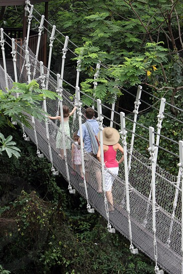 a bridge in the Jurong Bird Park in the city of Singapore in Southeastasia. photo