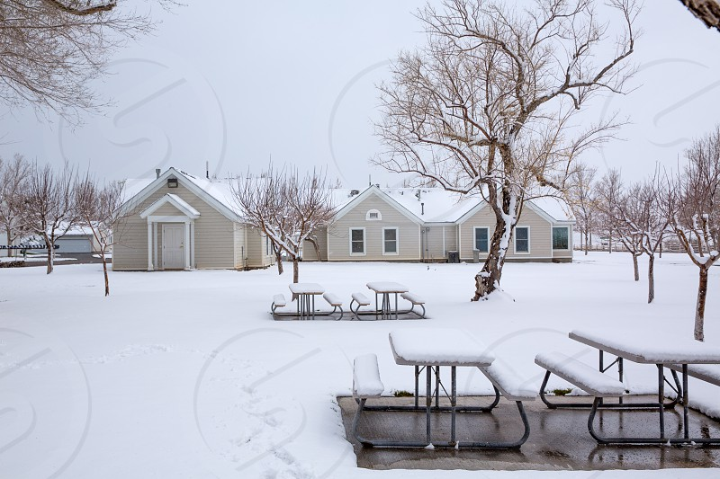 Nevada USA first snow at the park covering all in white photo