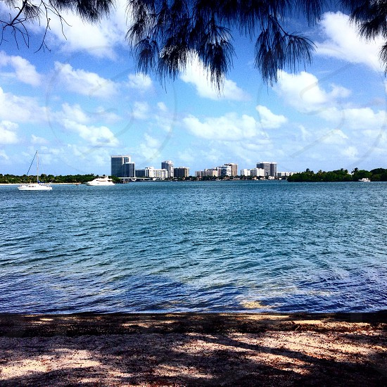 gray high-rise buildings in front of body of water photo