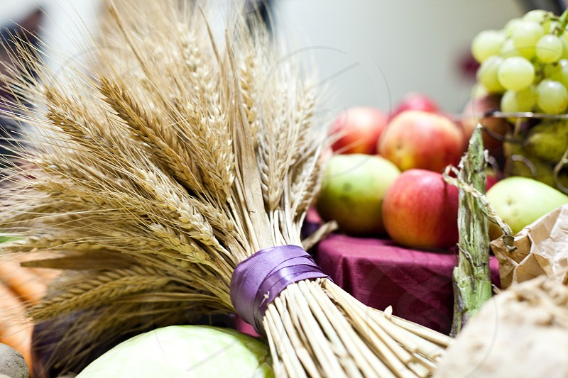 selective focus photography of wheat bundle beside apples and grapes photo