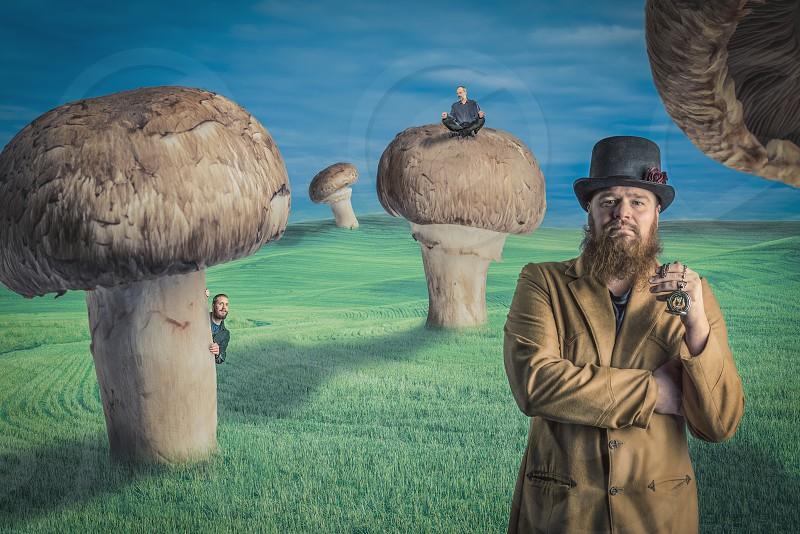 leprechaun standing on grassland under mushroom during daytime photo