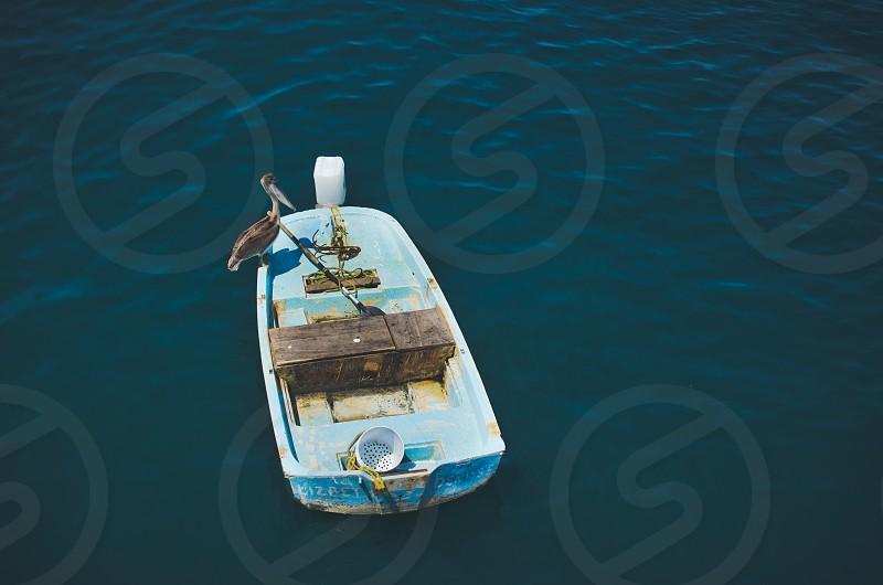 Pelican sitting on light blue fishing boat on the Ocean Puerto Vallarta Mexico. photo