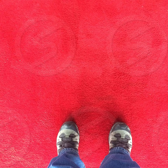 Shoes red carpet birds eye down yyc Calgary hiking boots man  photo