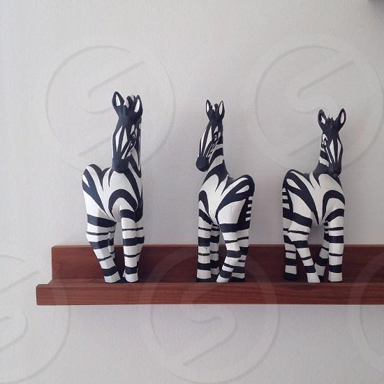 white and black zebra figure photo