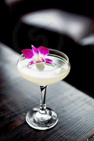 Cocktailgarnishflower drink contrastalcohol spirits  photo