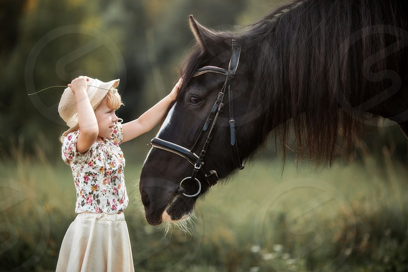 Little girl with shire horse at summer evening  photo