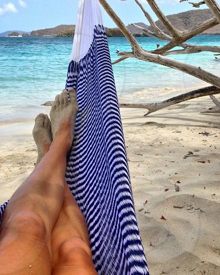 Beach hammock  photo