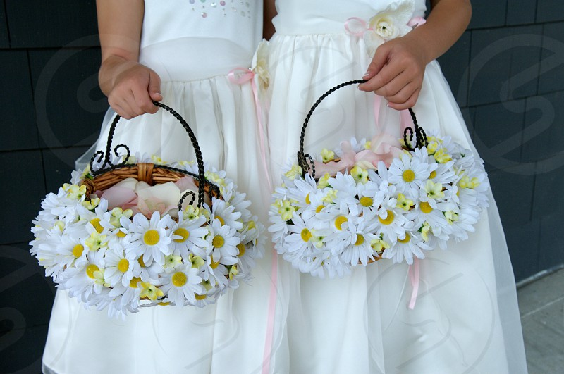 two flower girls holding daisy baskets photo