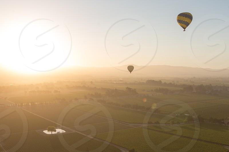 Sunrise Napa Valley California vineyard hot air balloon photo