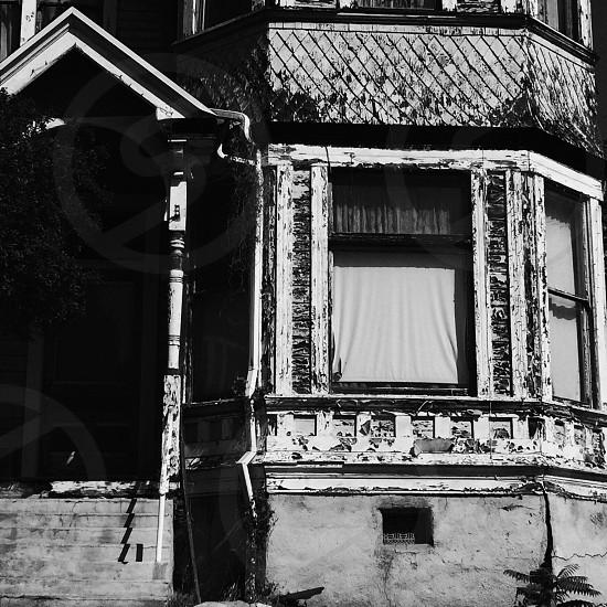 white window curtain photo