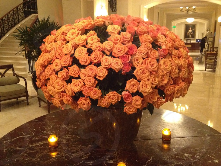How many #roses will it take? #bouquet photo