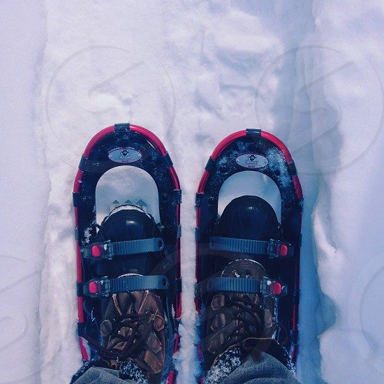 person wearing red and black snowshoes standing on snow photo