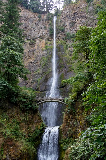 Multnomah Falls along the Columbia Gorge near Portland Oregon. @the_speedy_butterfly photo
