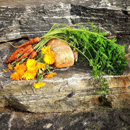 Thanksgiving food stilleben carrots bread autumn flower autumn flowers holiday  photo