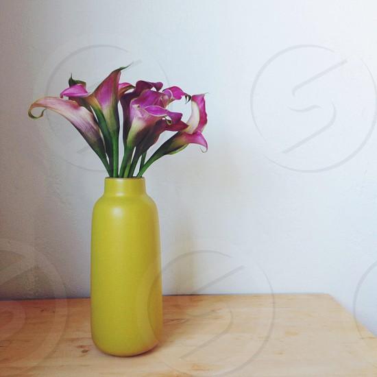 yellow ceramic vase photo