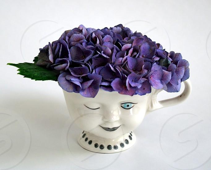 vintage tea coffee cup used as planter. hydrangea purple flower wink photo